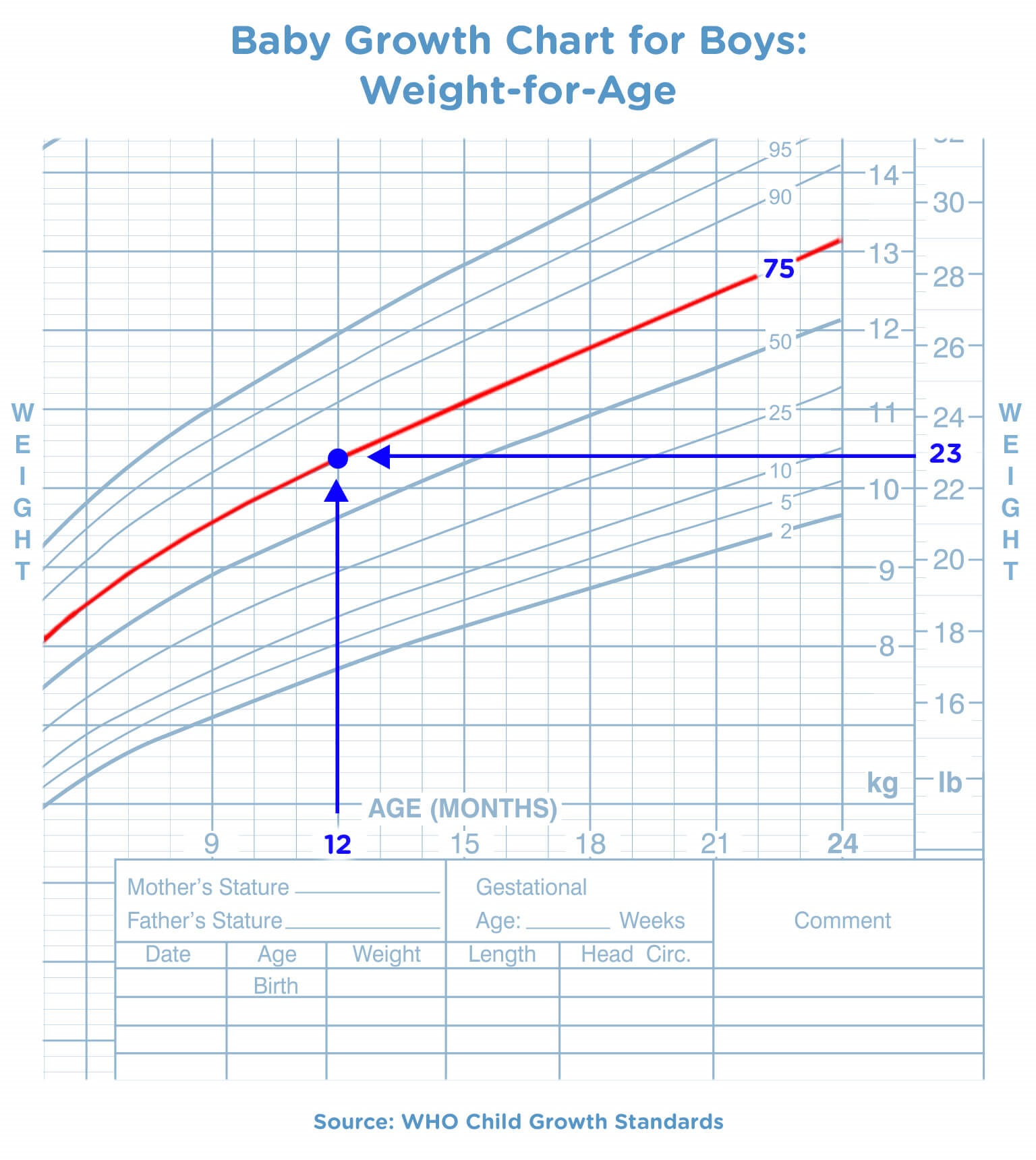 Baby Growth Chart for Boys Weight