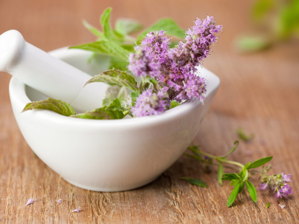 Top 6 Safe Herbs to Have During Pregnancy