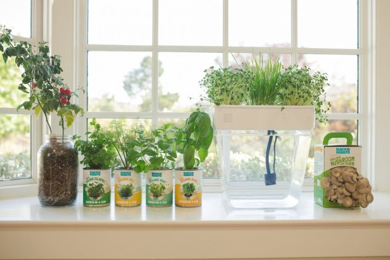 Indoor Garden Set